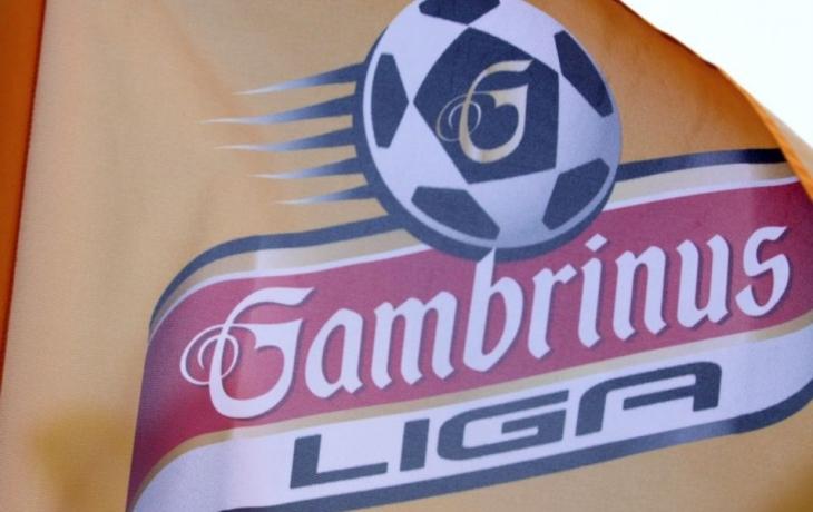 Los podzimní části Gambrinus ligy 2012 - 2013