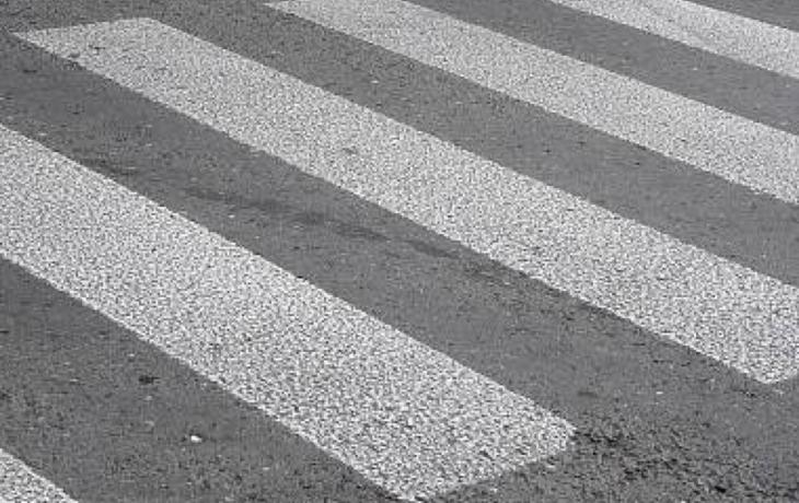 Zebra zmizela, dětem pomáhají strážníci