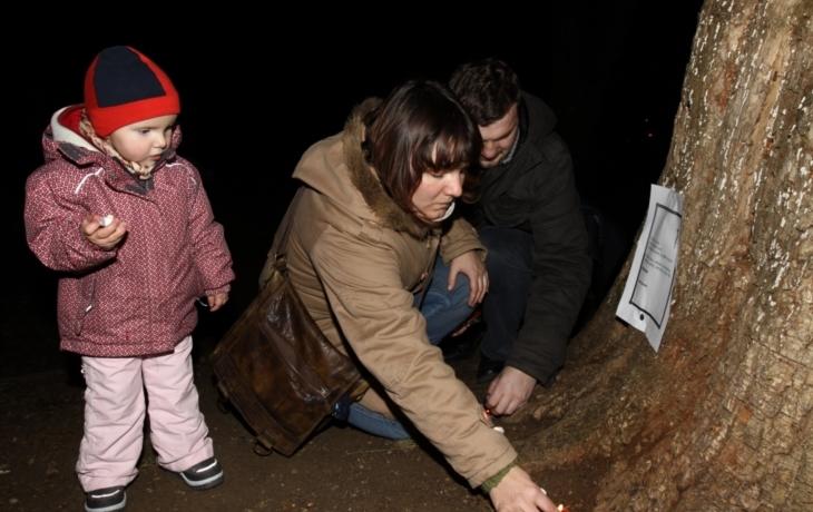 Kácení v parku: slzy, svíčky, smuteční parte na stromech