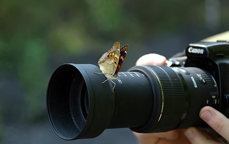 Fotografové, hlaste se!
