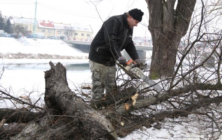 Stromy ustoupily protipovodňové ochraně
