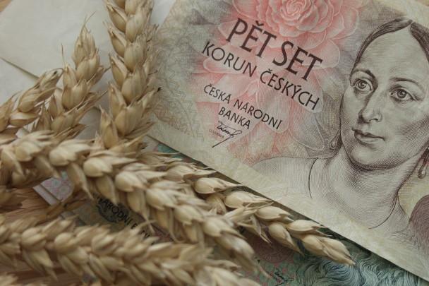 Stovky milionů pro zemědělce. Ministerstvo vyhlásilo další kolo dotací