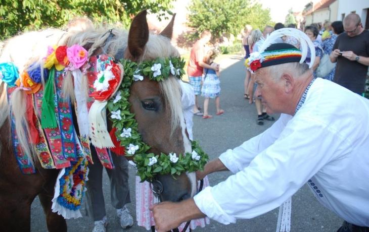 Modernizované zdobení koní