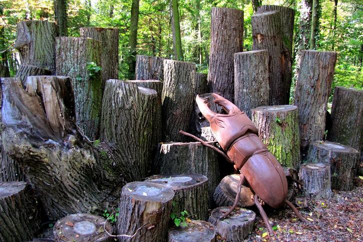 Broukoviště Březoviště má doplnit i dřevěná zvonkohra