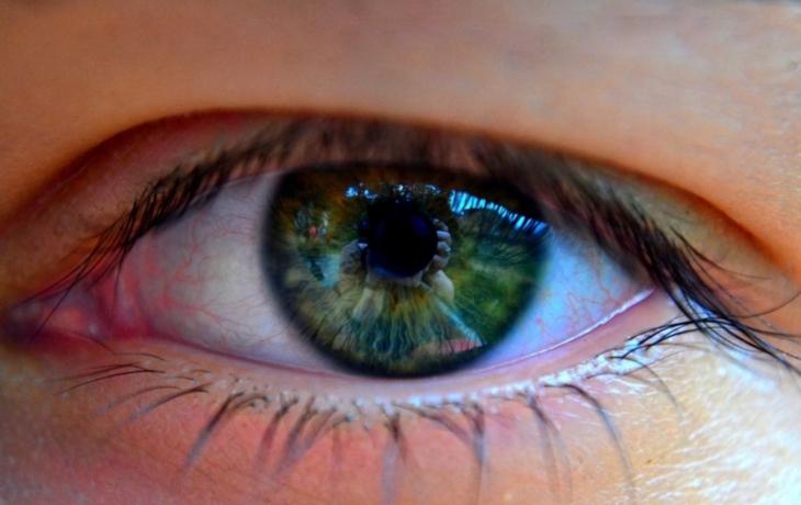 Kdo má nejkrásnější oči? Zkuste je vyfotit
