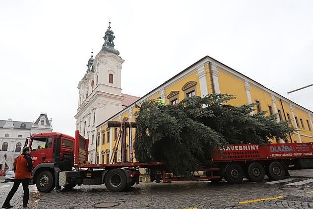 Masarykova náměstí už zdobí vánoční stromy. V Brodě svítí smrk, v Hradišti mají jedli z Podolí