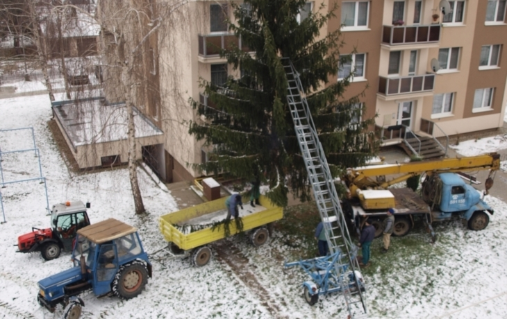 """""""Pavlačová hádka o vánoční strom"""