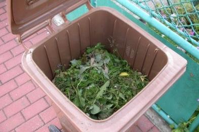 Bioodpad už ládují do kompostérů