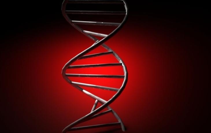 DNA nepatří odsouzenému! Stopa vede na Slovensko